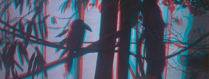 /www/wp content/uploads/2018/03/anaglyph darkbirds